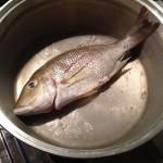 タマンの塩煮 あるいは 鯛のアクアパッツァ