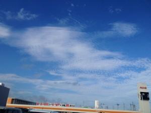 空が高いなー。夏だなー。